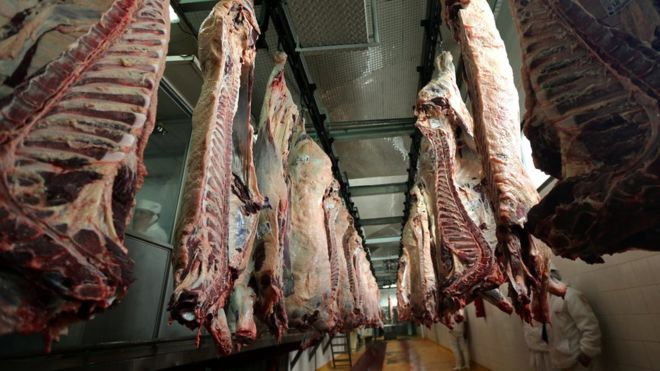 _105369049_beefcarcasses