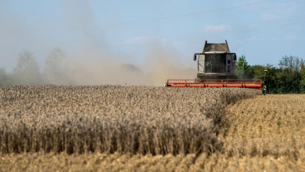 Общество: Ждет ли Германию очередная летняя засуха?