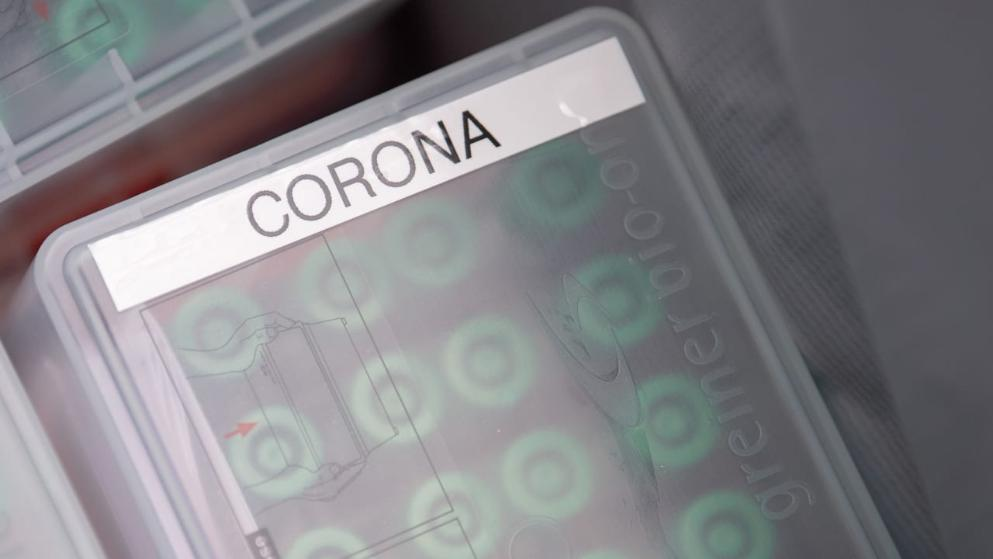 Общество: 1226 инфицированных всего за 24 часа: Германия проигрывает войну с коронавирусом